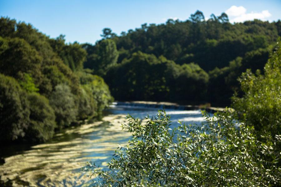 Río Ulla, Pontevedra