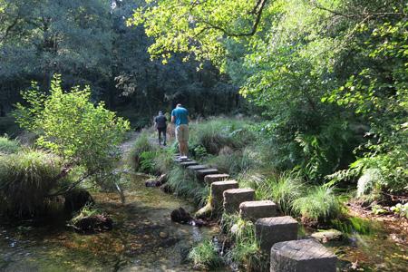 Bosques de Ponte Caldelas