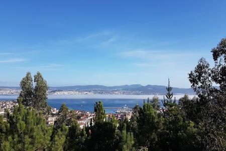 Montes de Vigo