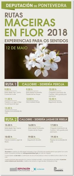 Rutas 'Maceiras en Flor' 2018 de la Deputación de Pontevedra