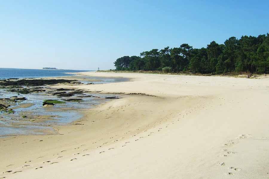 Playa Fluvial A Lamina, Tui