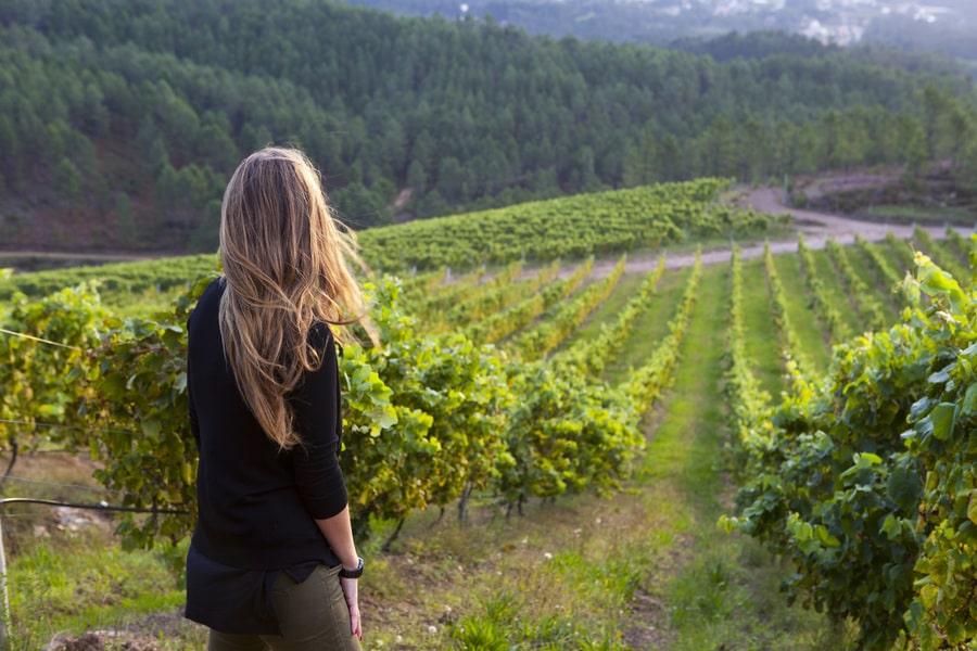 Bodegas Ruta do Viño Rías Baixas