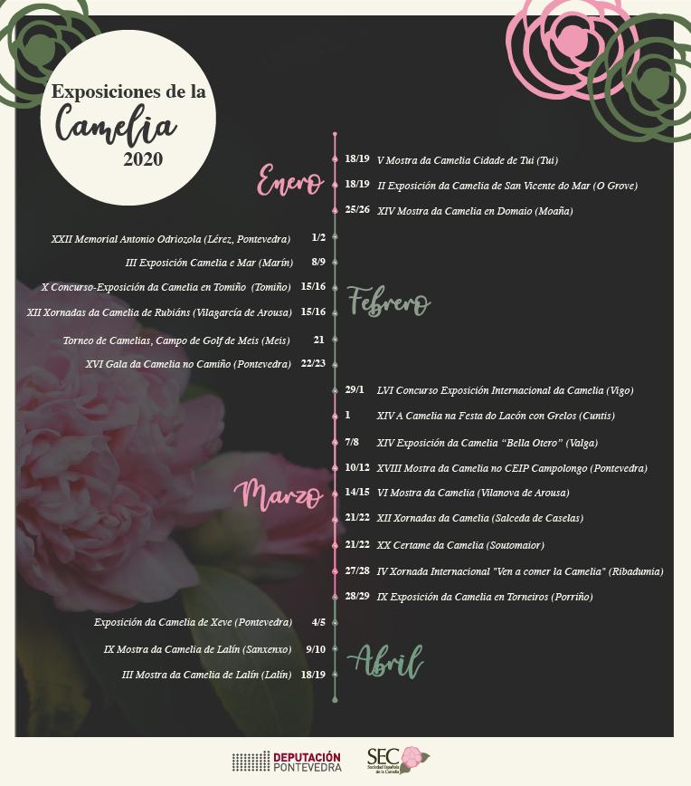 Calendario de exposiciones de la camelia en Rías Baixas 2020