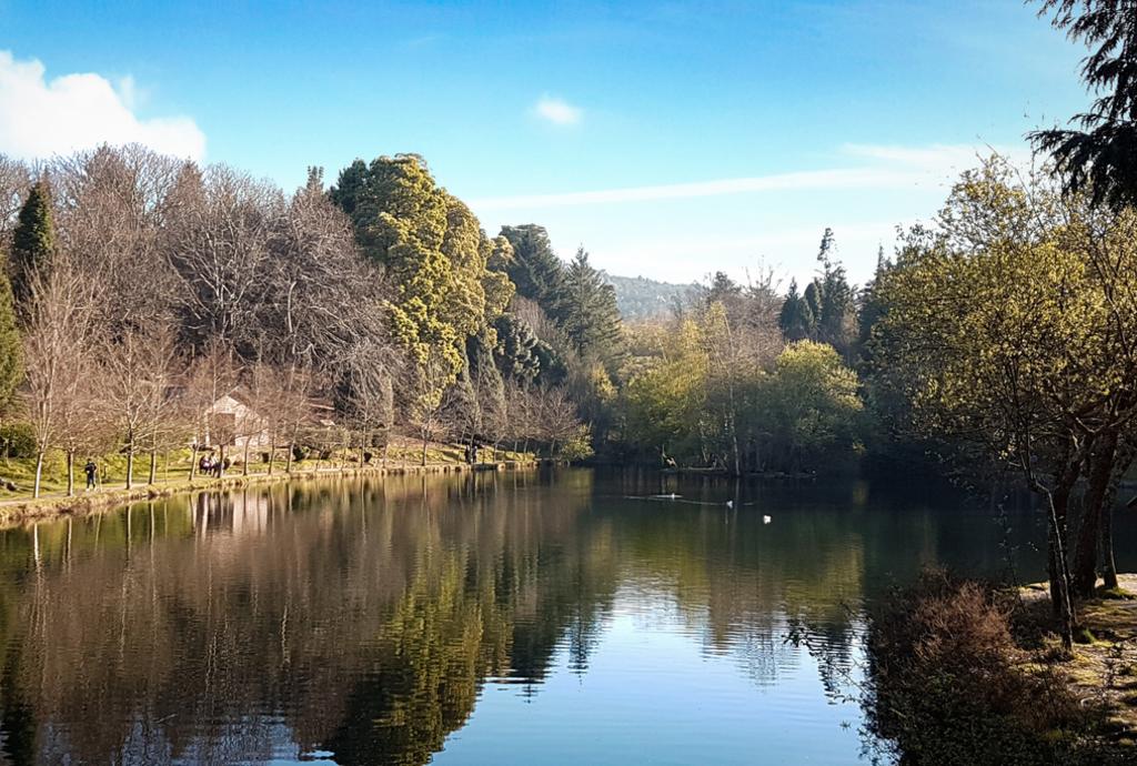Lago de Castiñeiras, naturaleza de Pontevedra Provincia