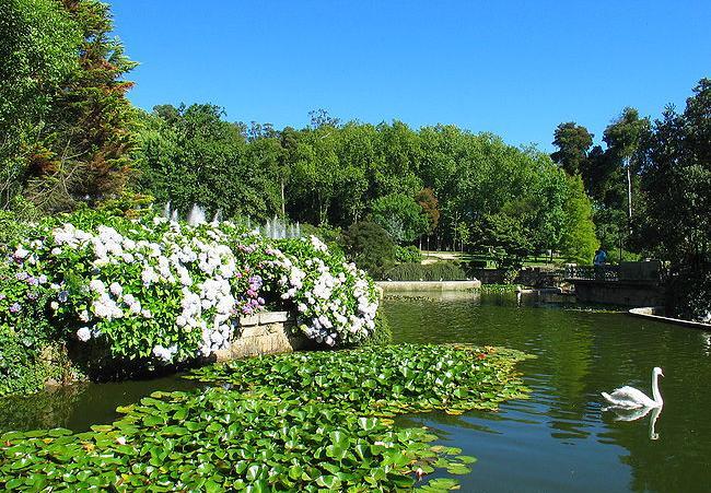 Lago artificial de vigo rias baixas for Como construir un lago artificial